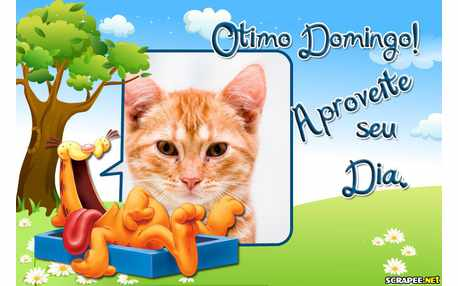 6200-Domingo-do-Garfield