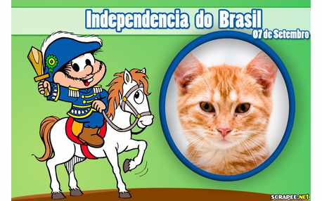 Moldura - Independecia Do Brasil