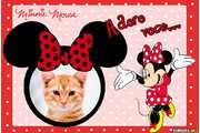 6210-Amor-pela-Minnie