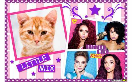 Moldura - Little Mix