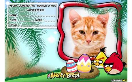 Moldura - Convite Angry Birds Para Imprimir