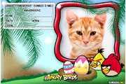 6237-Convite-Angry-Birds-para-Imprimir