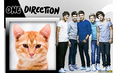 Moldura6243 One Direction Banda