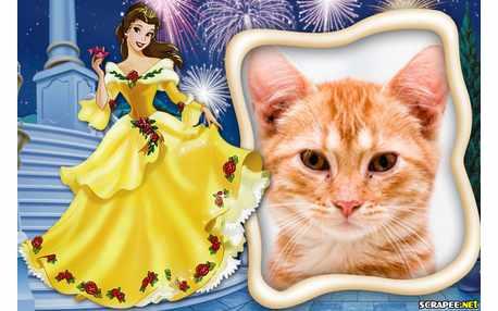 Moldura - Princesa Bela