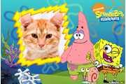 6256-Sponge-Bob-Squarepants