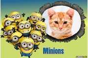 6264-Minions