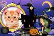 6273-Halloween-31-de-novembro