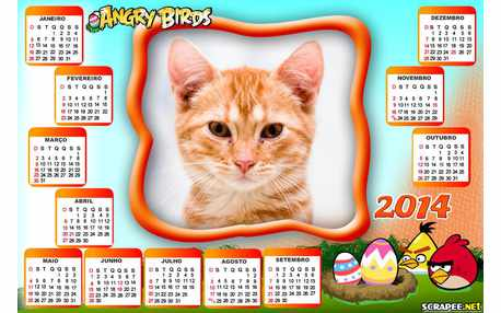 Moldura - Calendario Angry Birds
