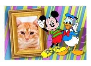 Moldura - Donald And Mickey