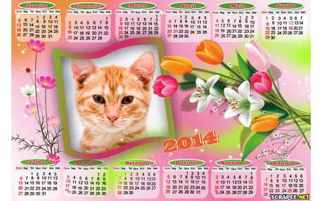Moldura - Calendario 2014 Com Flores