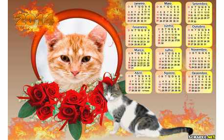 Moldura - Calendario Gatinho 2014