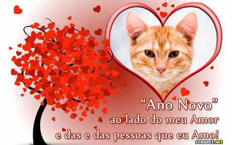 6395-Ano-Novo-ao-lado-do-Amor