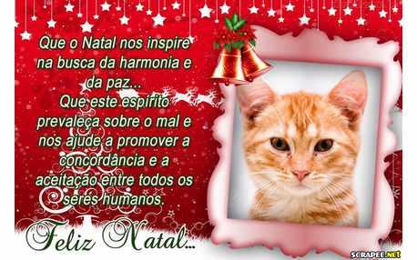 Moldura - Mensagem De Natal