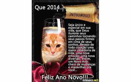 Moldura - Um Brinde A 2014