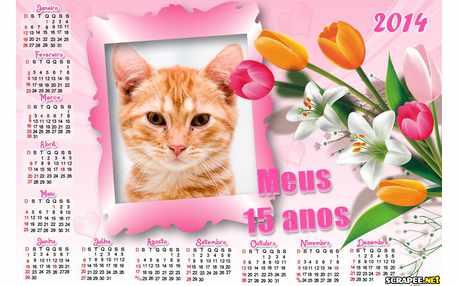 Moldura - Calendario De 15 Anos
