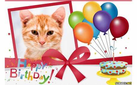 Moldura - Happy Birthday