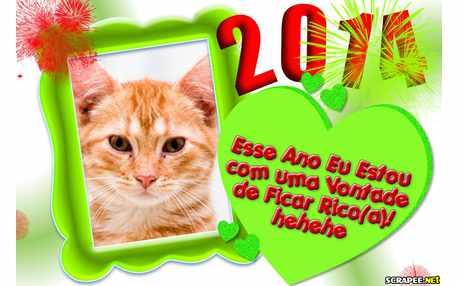 Moldura - Vontade Ficar Rico Em 2014