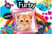 6457-Furby