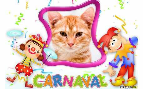 Moldura - Carnaval So Aledria