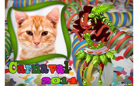 Moldura - Carnaval 2014