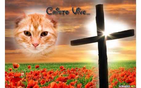 6531-Cristo-Vive