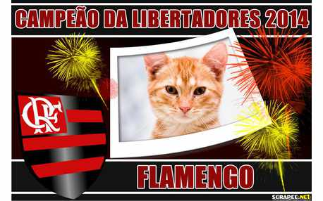 Moldura - Flamengo Campeao Das Libertadores