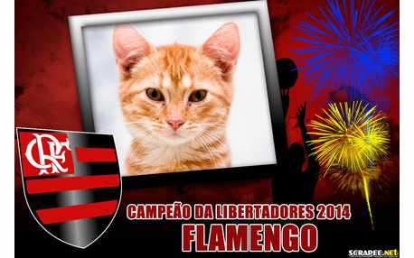 Moldura - Campeao Das Libertadores 2014 Flamengo