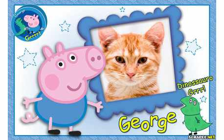 Moldura - George Pig