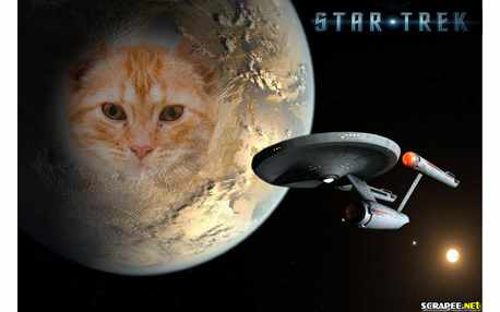 Moldura - Star Trek