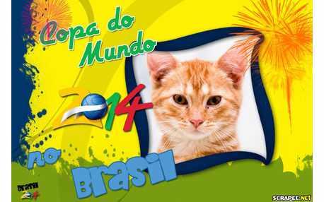 Moldura - Copa Do Mundo No Brasil 2014