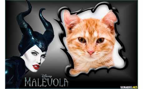 Moldura - Malevola Disney