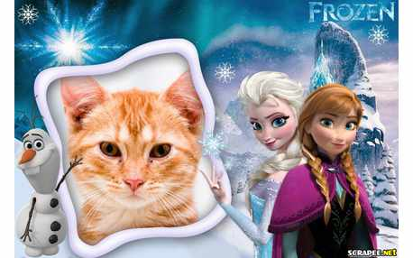 Moldura - Frozen