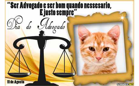 Moldura - Feliz Dia Do Advogado   11 De Agosto