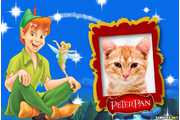 6703-Peter-Pan