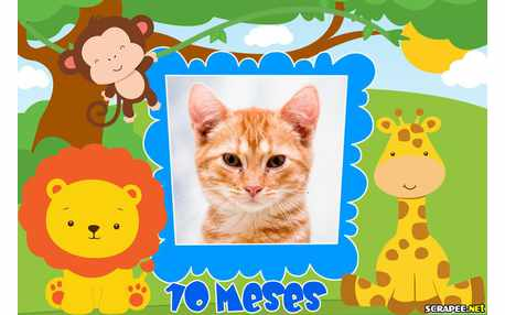 Moldura - Bebe Menino 10 Meses