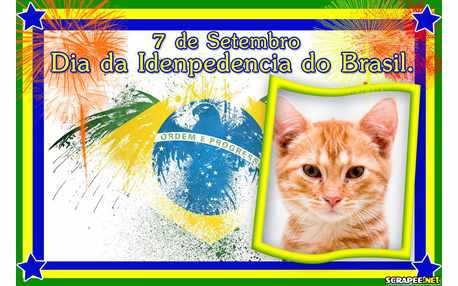 6740-Independencia-do-Brasil