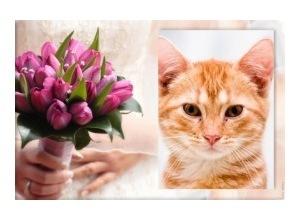 Moldura - Bouquet
