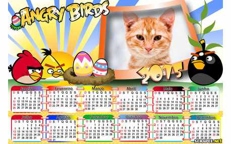 Moldura - Calendario Angry Birds 2015