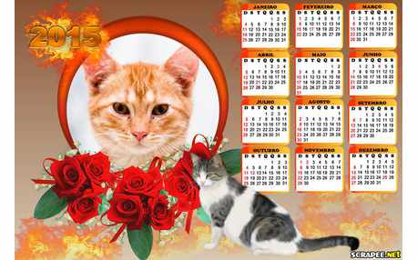 Moldura - Calendario De Gato 2015