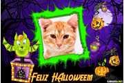 6870-Halloween-31-de-outubro