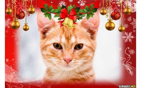 Moldura - Borda De Natal Para Fotos
