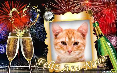 Moldura - Feliz Ano Novo