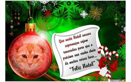 Moldura - Mensagem De Natal Para Foto