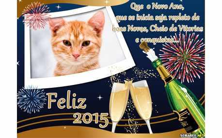 Moldura - Ano Novo Feliz