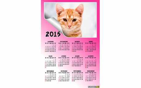 Moldura - Calendario 2015 Rosa