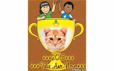 Moldura - 2015 Feliz Ano Novo