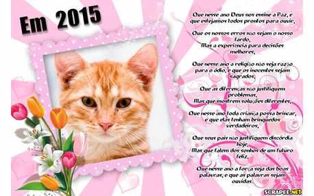 Moldura - Mensagem De Ano Novo 2015