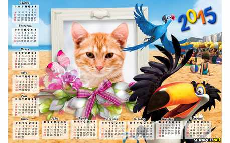 Moldura - Calendario 2015 Filme Rio