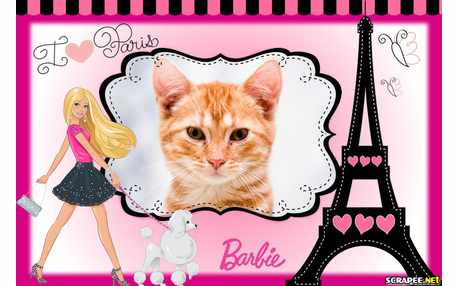 6979-Barbie-Paris