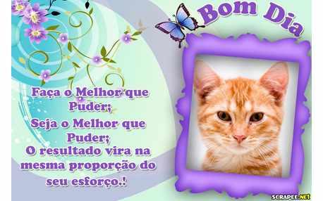 Moldura - Bom Dia  Brasil